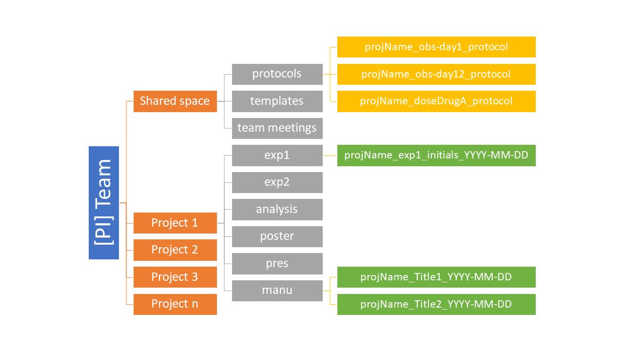 2021/2021-07-27_IT101-DM/slides/img/folder_structure.png