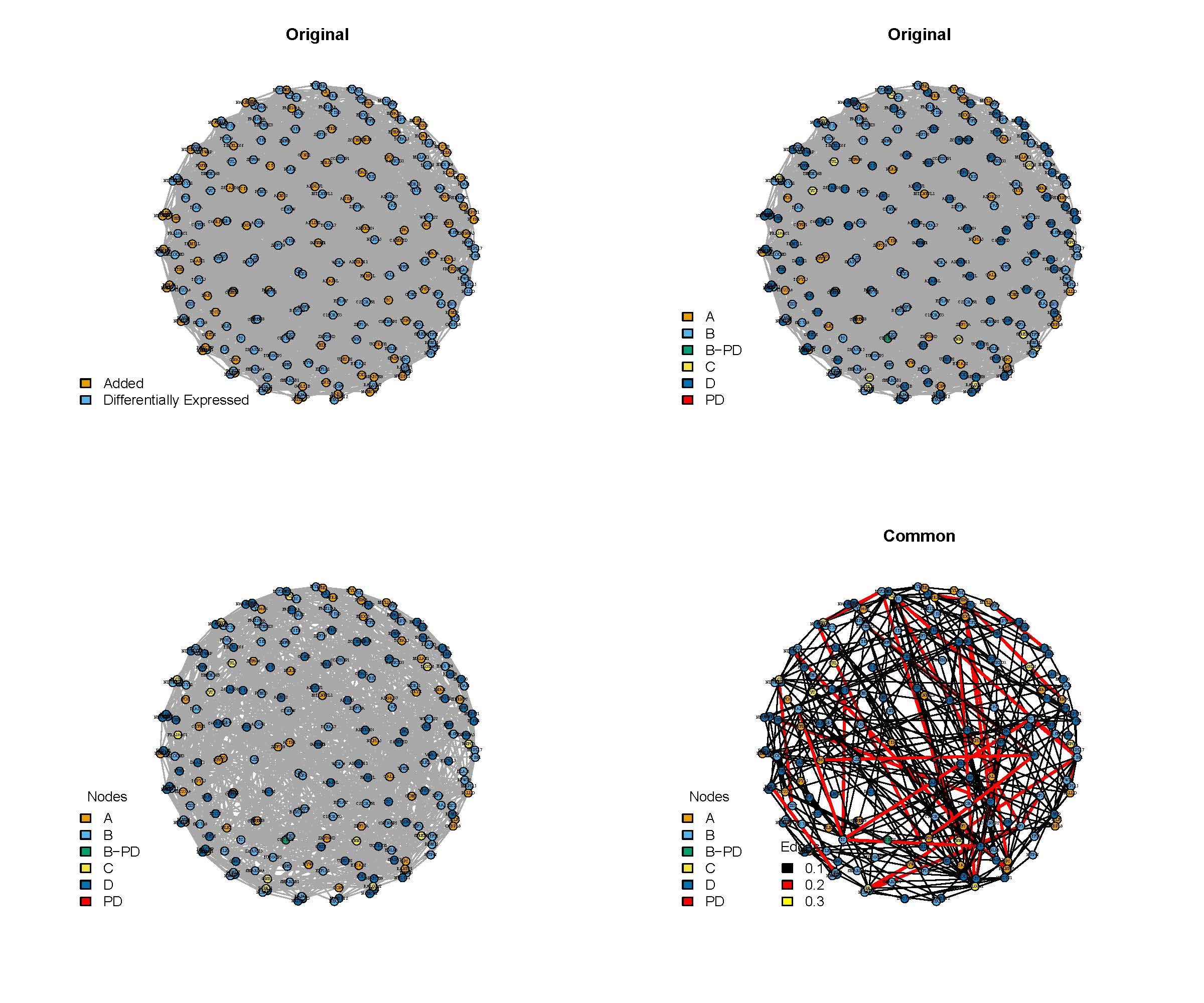 Figures/Network_DE_only.jpg