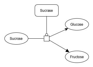 docs/sucrose_hydrolysis.png